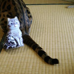 わんこ猫ゆきむらぶろぐ / お気に入り