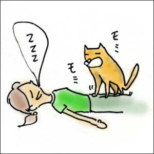 わんこ猫ゆきむらぶろぐ / マンガでゆきむ