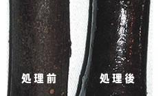 樹木保護コート剤を使用した例