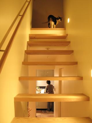 2階へケイタ君