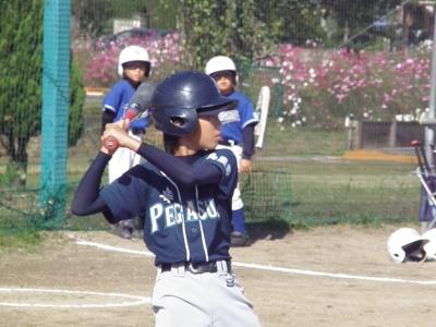 PA230225.JPG