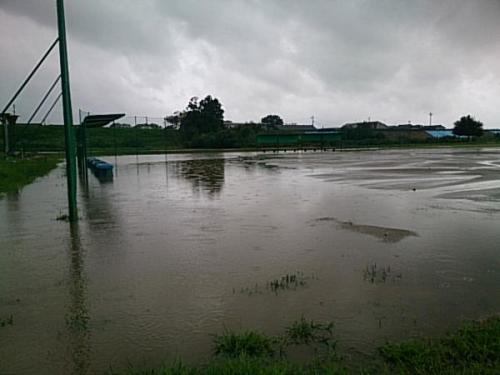 長岡スポーツ公園.jpg