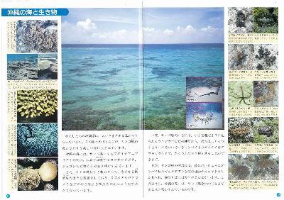 沖縄の理科6年P12〜13