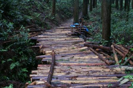 手作りの木道