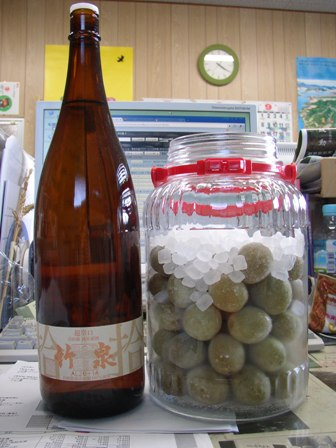日本酒梅酒に挑戦