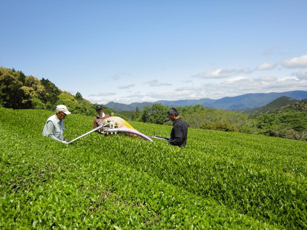 茶刈の倉谷さん