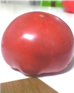 大中トマト