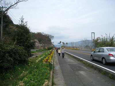 お花見ノルディック・ウォーク in 周防大島