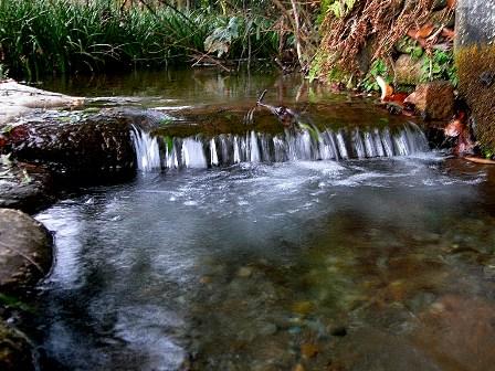 澄んだ水の音は癒しの原点です
