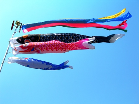 青空に泳ぐ鯉幟