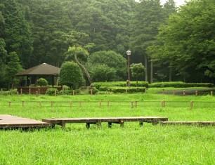 雨の日の芹沢公園