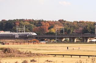 頻度多い東海道新幹線