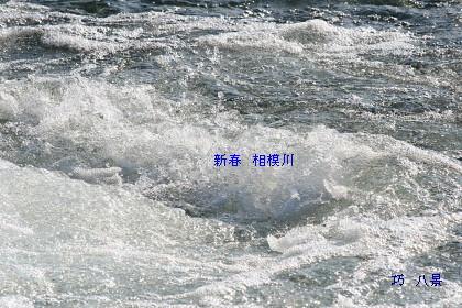 清流流れる相模川