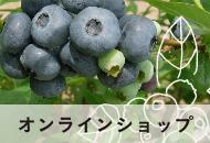【リンクボタン】坂農苑 オンラインショップ
