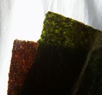 浜佐園の新海苔 炙って透明な緑色になったものと炙るのもの