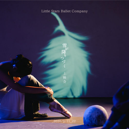 Little Stars Ballet Company