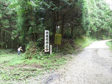 山頂側の分岐(右へ)