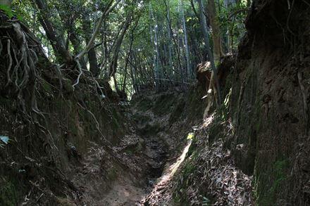 可也山の登山道