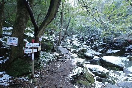 登山道(雪がちらほら)