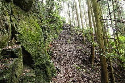 登山口付近の急坂