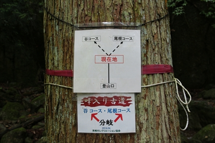 浅間山のコース分岐