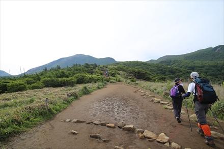 ゆるやかな登山道