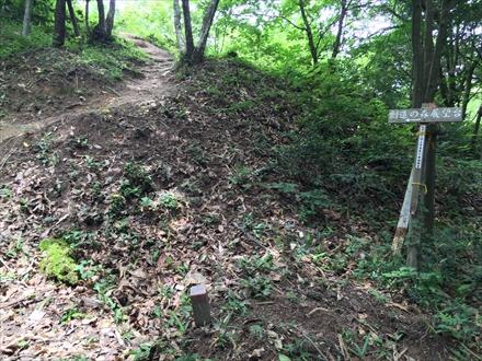 創造の森展望台への道