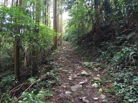 新立山登山道