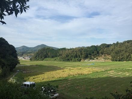 正助ふるさと村付近の田園風景