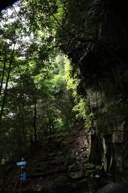 分岐地点の岩壁