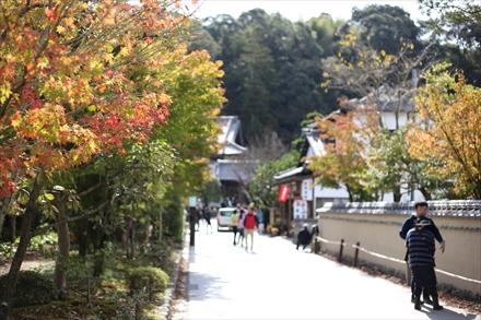光明禅寺へ続く道の紅葉