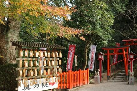 天開稲荷神社の紅葉