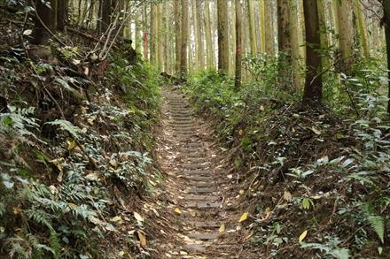 愛嶽山登山道