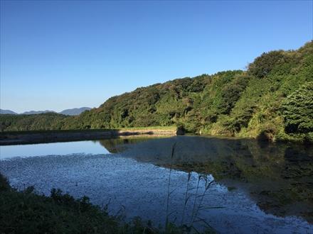 磯辺山登山口近くの池