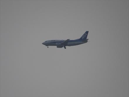 和白干潟から見える飛行機
