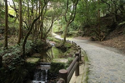 清水寺本坊庭園への道
