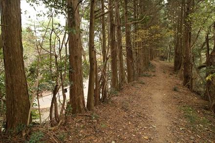 清水山山頂方面への道