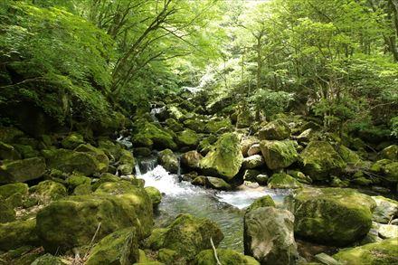 吉部登山口付近の景色
