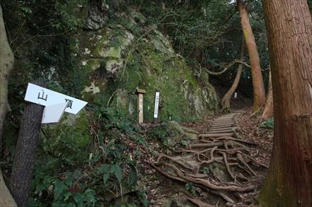 立花山山頂への分岐