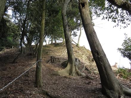山頂下のロープ場