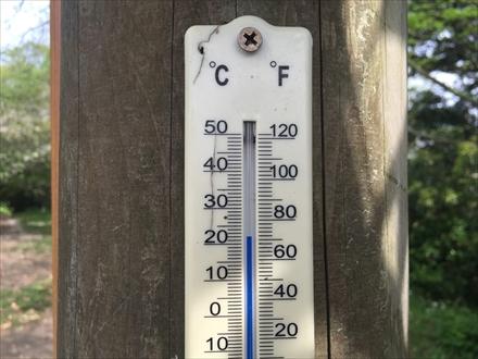 立花山山頂の気温