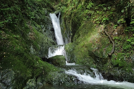 福智山の滝