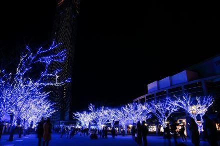 福岡タワー前の広場のイルミネーション