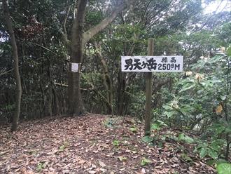 男天ヶ岳山頂