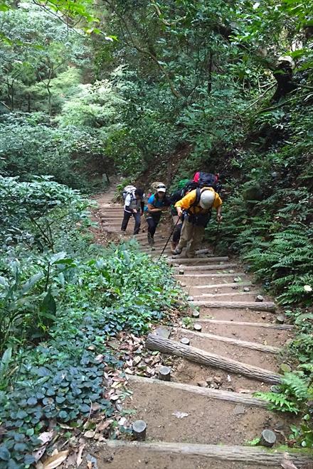 立花山に登る