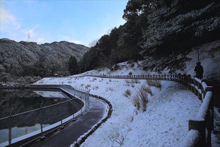 昭和の森の積雪