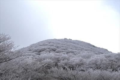 扇ヶ鼻方面の霧氷