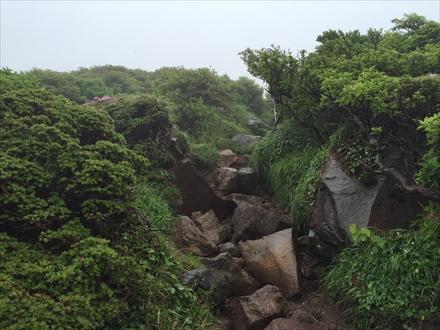 山頂下の岩場