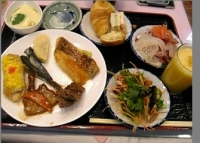 朝菜夕菜2