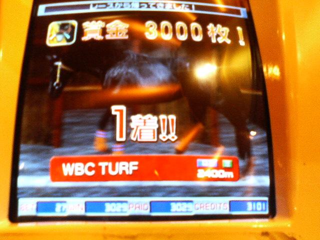 WBC勝利